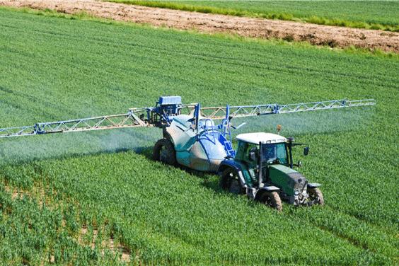 Fungiciden uit de landbouw veroorzaken gevaarlijke azool-resistente schimmels